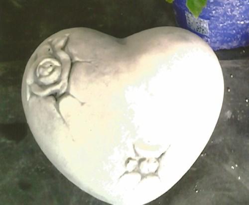 Hart dicht rozen