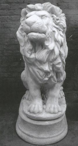Leeuw rechts
