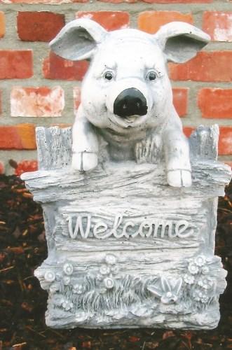 Welcome varken